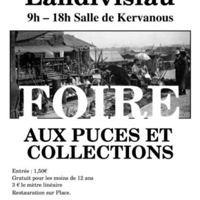 FOIRE AUX PUCES ET COLLECTIONS dimanche 9 février de 9h à 18h à Landiviau.